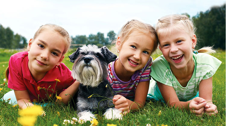 Kinder mit Hund