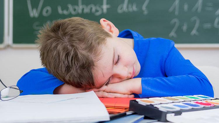Schule schwänzen: Schlafender Schüler
